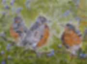 Fledglings Invade the Blueberry Patch.jp