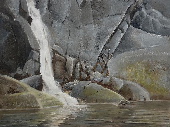 Fjord Shoreline.jpg