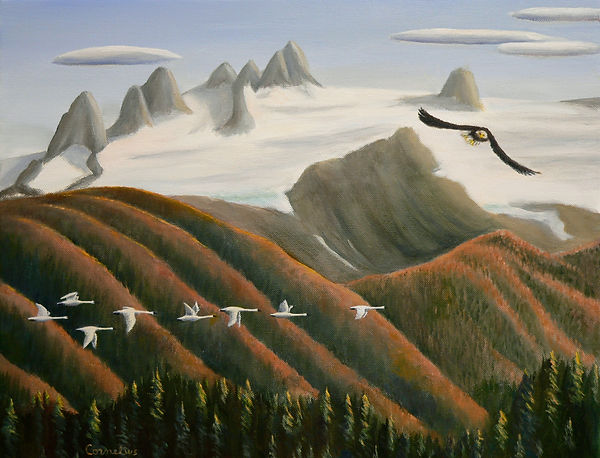 Wings over the Tongass.jpg