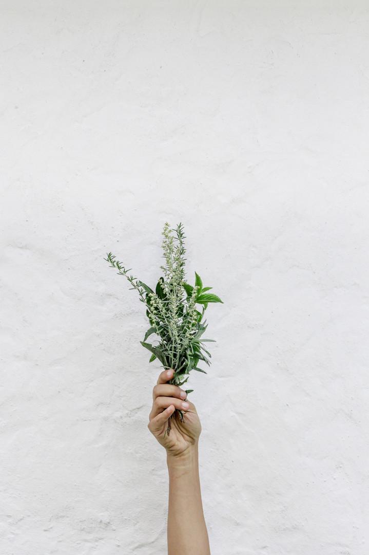 Salty Studio / Aromatherapy