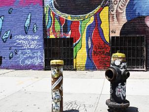 Secret Urban Suppers - Brooklyn, New York