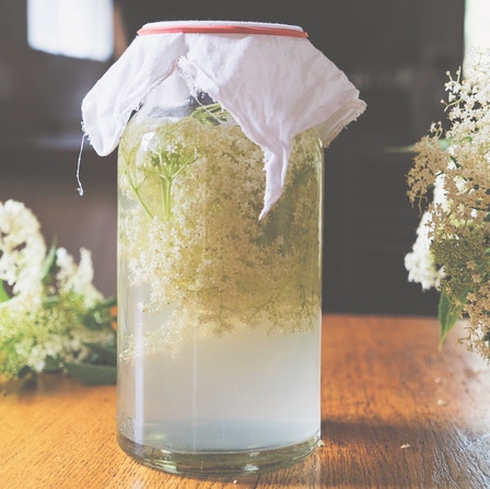 Wild Fermented Elderflower Soda