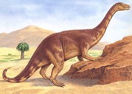 Riojasaurus.jpg