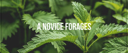 forages.jpg