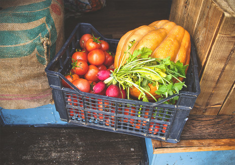 Fresh organic seasonal vegetables in autumn in our van- tomatoes, squah and radish.