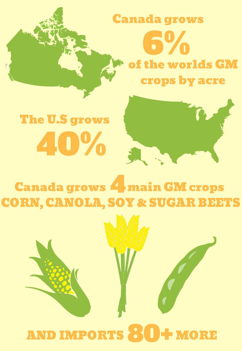 GMO infographic canada