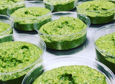 Welcome to the Rocket Fuel Pesto Blog!