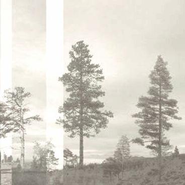 Panorama-Pale-Bluegreen_edited_edited.jp