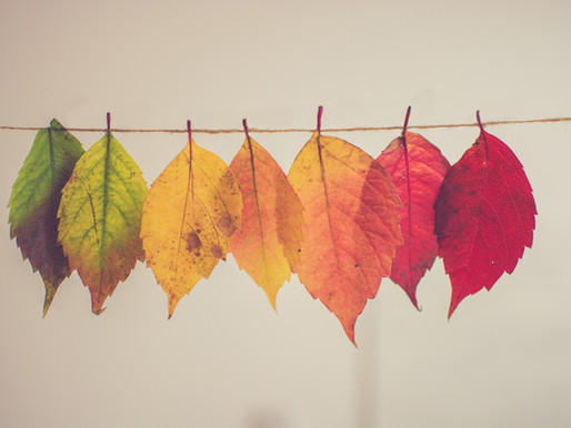 Change Happens: Aim for a Blend of Introspect, Retrospect and Prospect