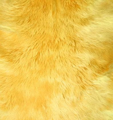 5x Sunflower  Fur Pelts
