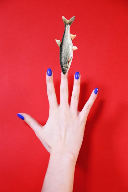 Fish Finger.jpg
