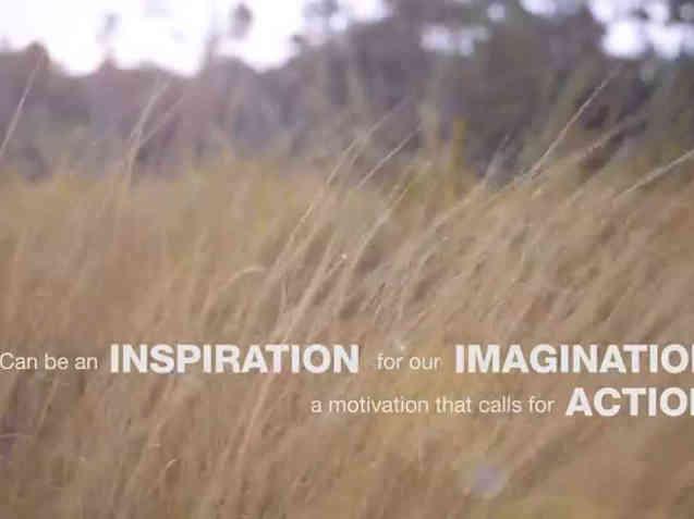 TEDxSungaiSegget 2015 Trailer
