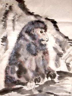 Mr Monkey whle.JPG