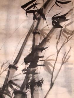 bamboo in wind1.JPG