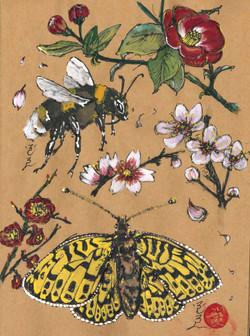 bee and flowers.jpg