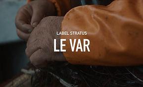 LE VAR.jpg