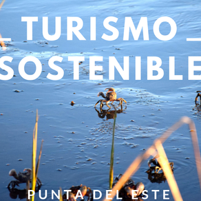 Informe Anual - Turismo Sostenible 2018.