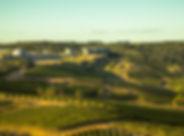 Bodega Garzón.jpg