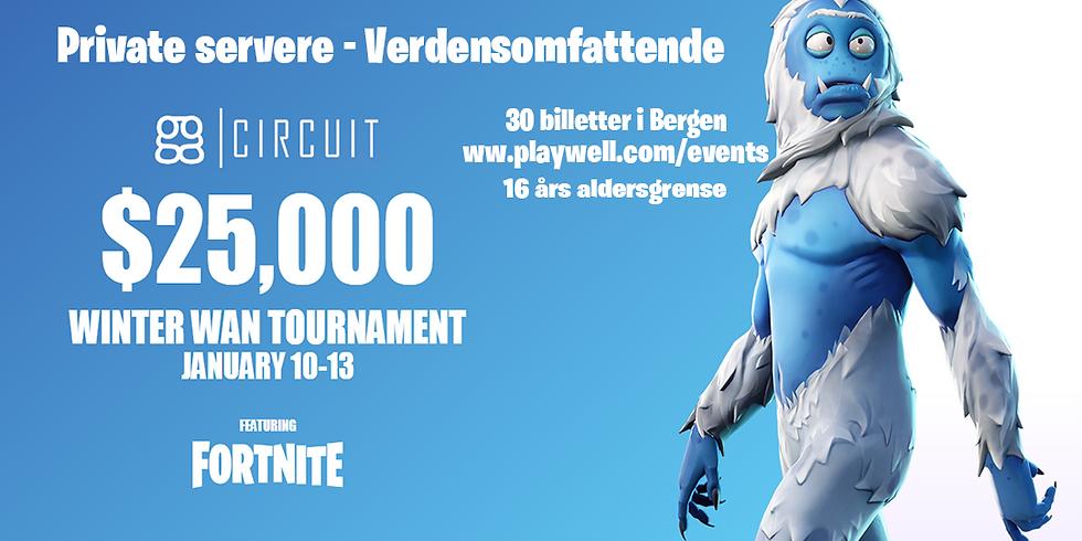 Internasjonal Fortnite turnering, $25 000 Prizepool (16+) (1)