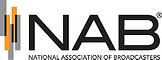 NAB logo .png