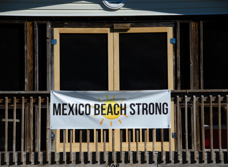 Operation Amberjack: Cleaning up after Hurricane Michael with Team Rubicon.