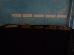 5 plages, 5 sables
