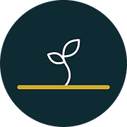 Plant your financial investment goals with Kauri Financial Planning