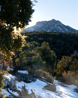 Mt. Charleston Sunset / Megan Bethge