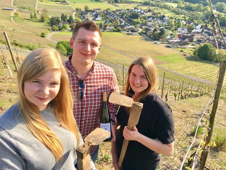 """Erneuter Titelgewinn für Weingut König Johann: """"Jungwinzer des Jahres an der Saar 2018"""""""