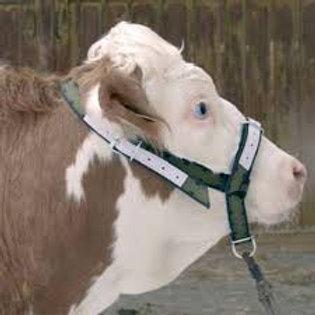 Cabezada reforzada para vaca