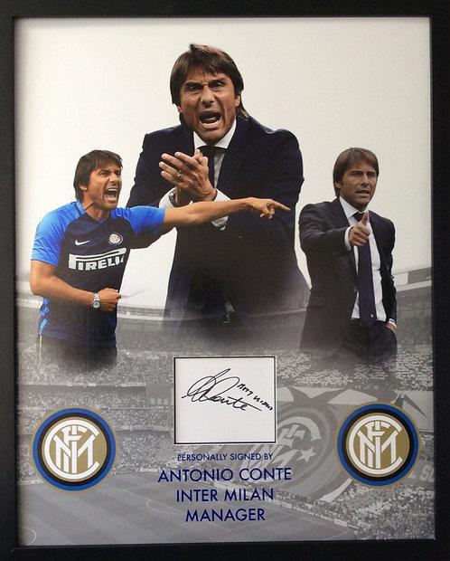 ANTONIO CONTE AC13-D
