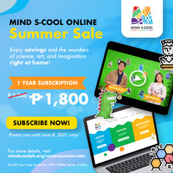 Mind S-Cool Online Summer S