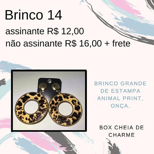 Brinco 14
