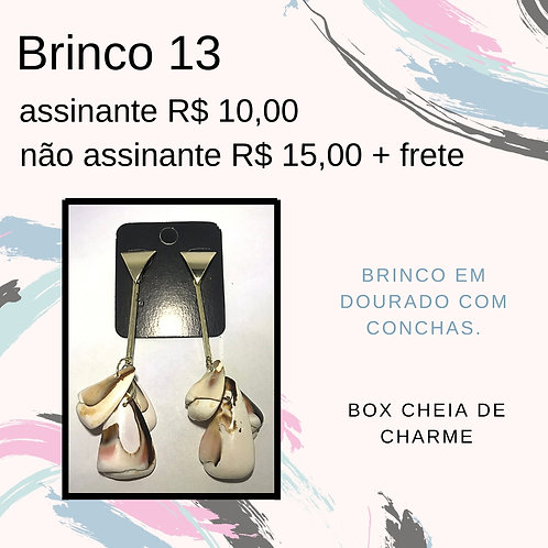 Brinco 13