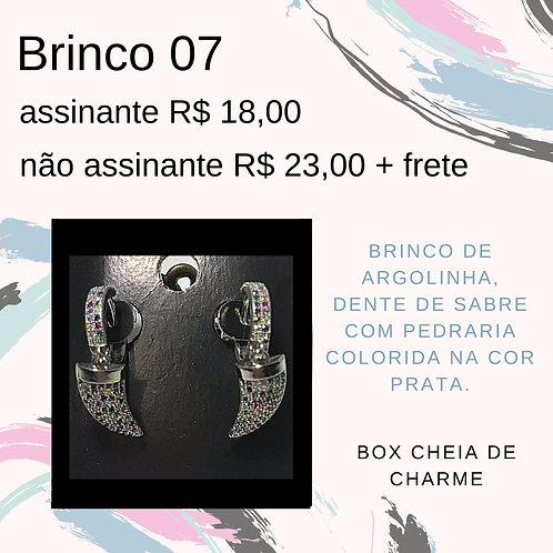 Brinco 07