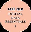 TRVA_Tafe Qld DDE.png