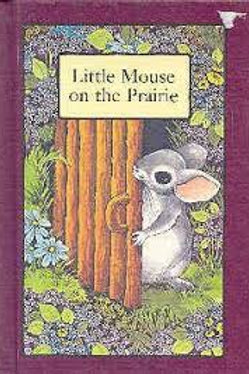 Little Mouse on the Prairie