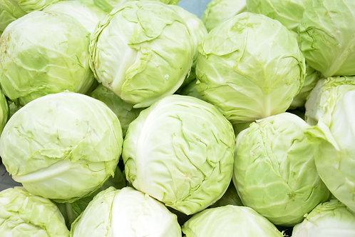 Repolyo /Cabbage Per Kilo