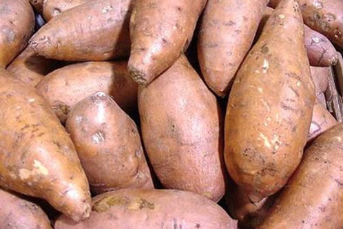 Kamote / Sweet Potato Per Kilo