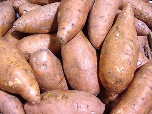 Kamote / Sweet Potato Per Kilo