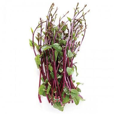Alugbati / Malabar Spinach Per Kilo