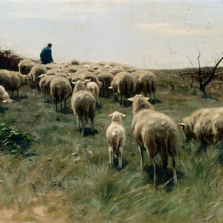 A Suffering Shepherd - Psalm 23:1