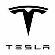 tesla white logo.png