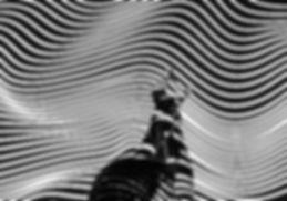 liliana-pereira-708261-unsplash_edited.j