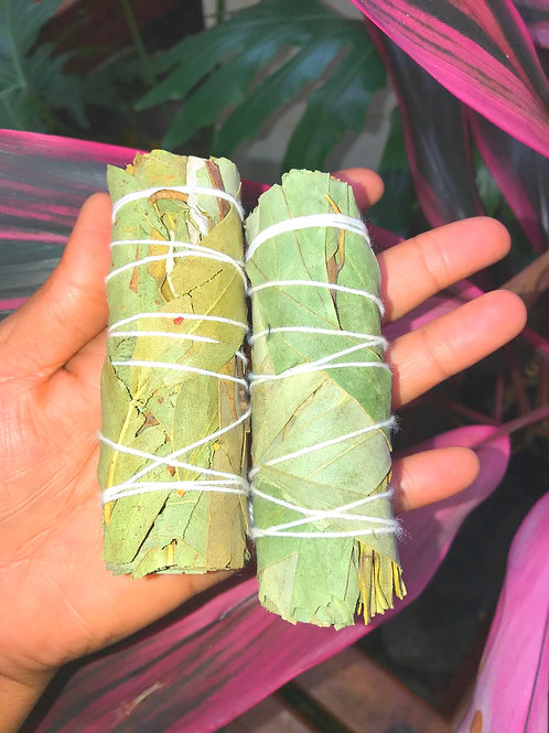 Eucalyptus Smudge Sticks