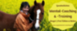 Mental-Coaching & Training Angstreiter, anstfrei reiten