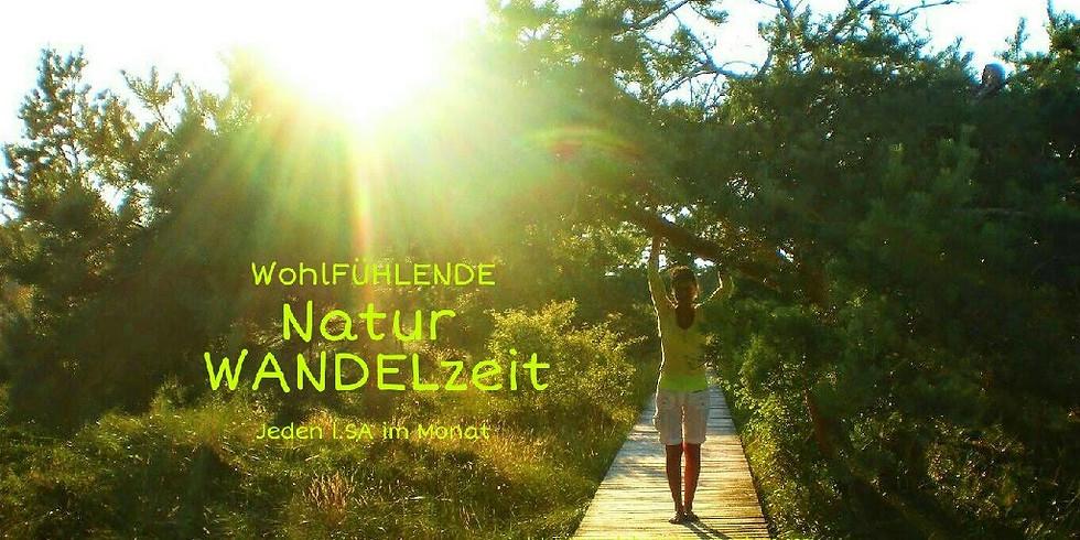 1Tag WohlFÜHLENDE Natur WANDELzeit - inkl. Picknick am See (1)