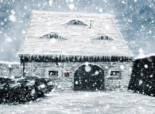 Garage Door Winter Tips.jpg