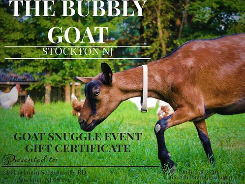 Goat Snuggle Gift Certificate