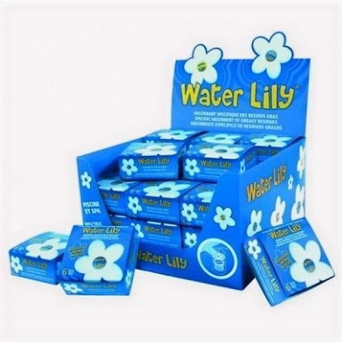 Water Lily - 1 Schachtel à 6 Stk.
